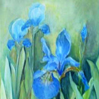 2014 - Blaue Iris, 40x50cm, Acryl